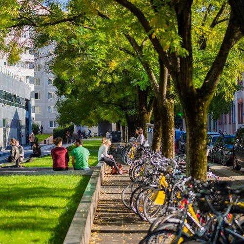 Parking vélos devant Grenoble école de management